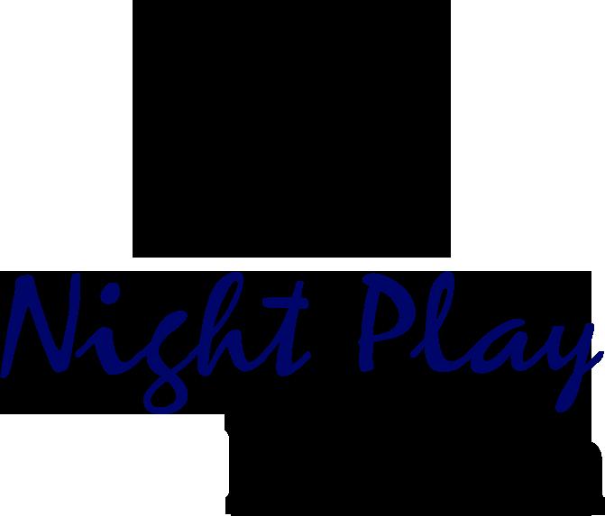 NightPlayBerlinLogo